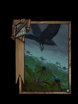 Crow's Eye